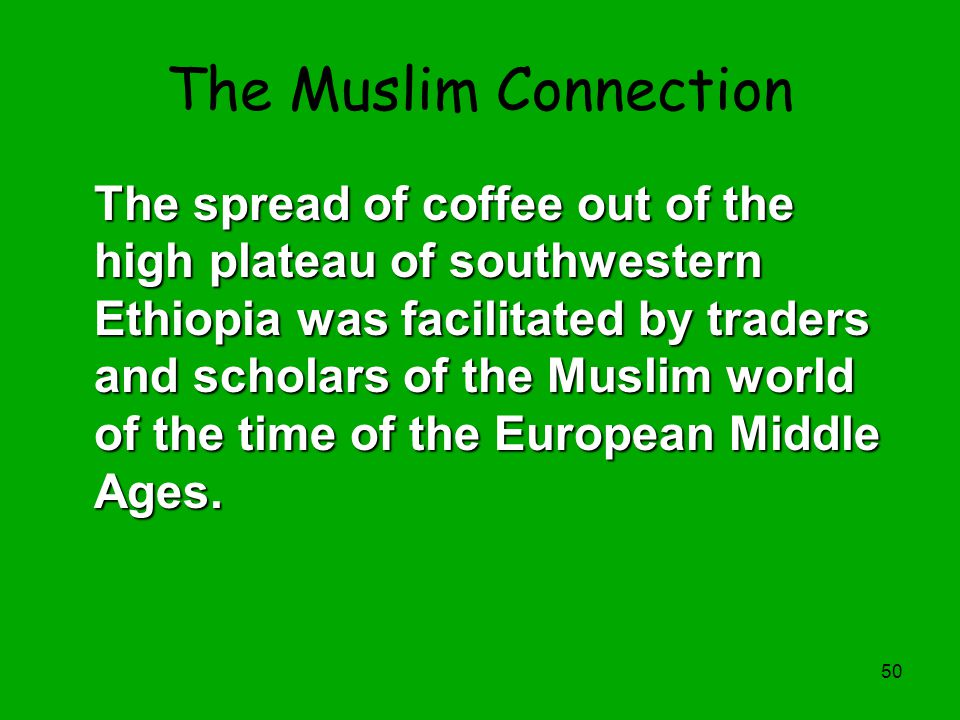 The Muslim Connection