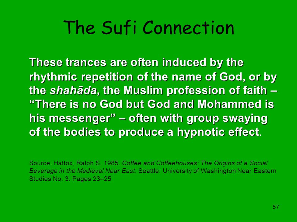 Richard W. Franke The Sufi Connection.