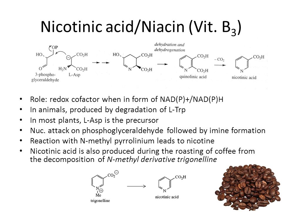 Nicotinic acid/Niacin (Vit. B3)