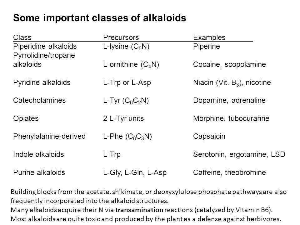Some important classes of alkaloids