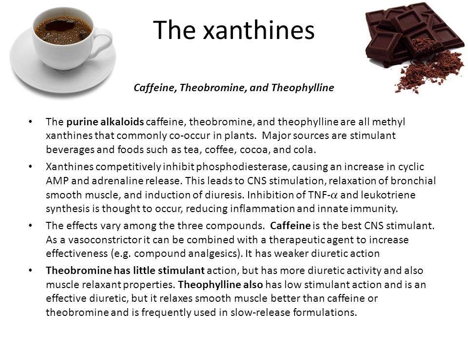 Caffeine, Theobromine, and Theophylline