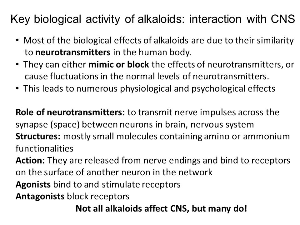 Key biological activity of alkaloids: interaction with CNS
