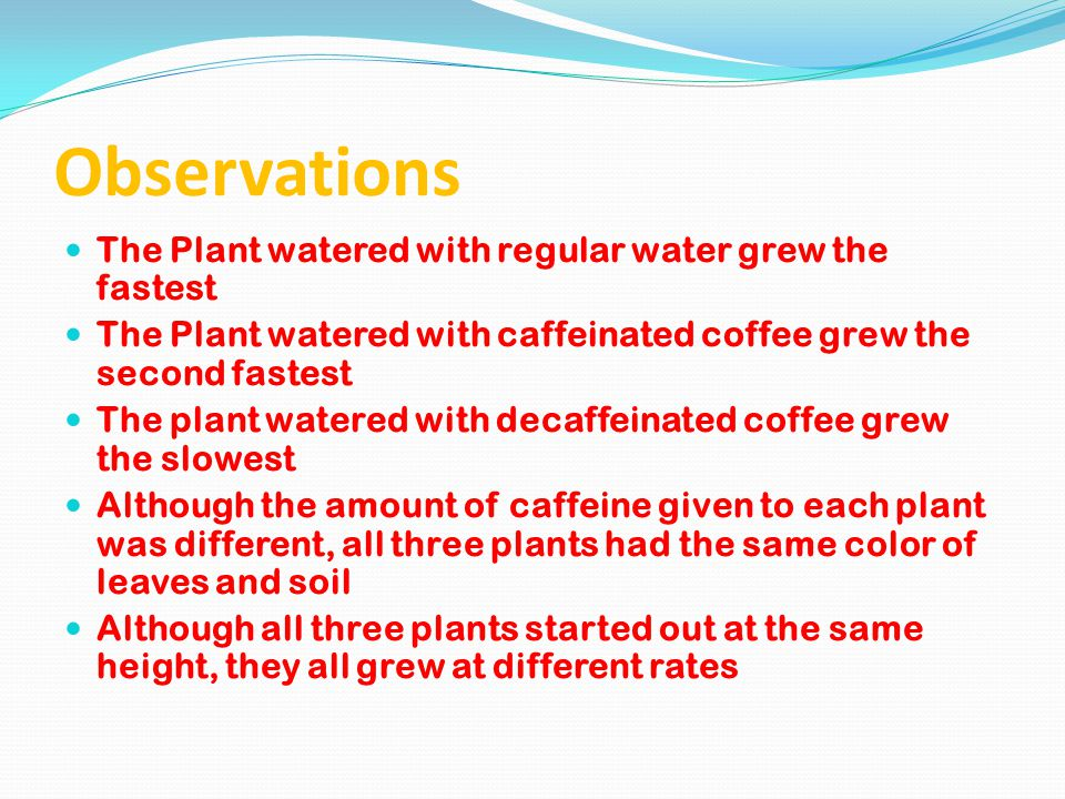 Observations The Plant watered with regular water grew the fastest