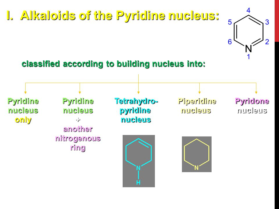Pyridine nucleus + another nitrogenous ring