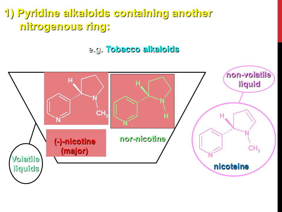 1) Pyridine alkaloids containing another nitrogenous ring: