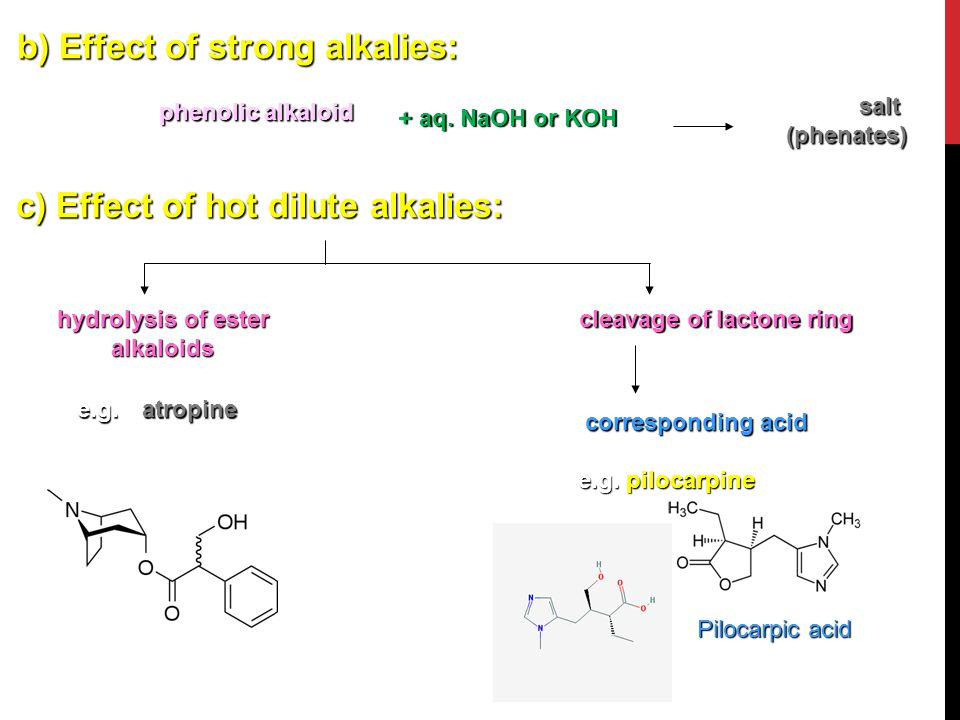 hydrolysis of ester alkaloids