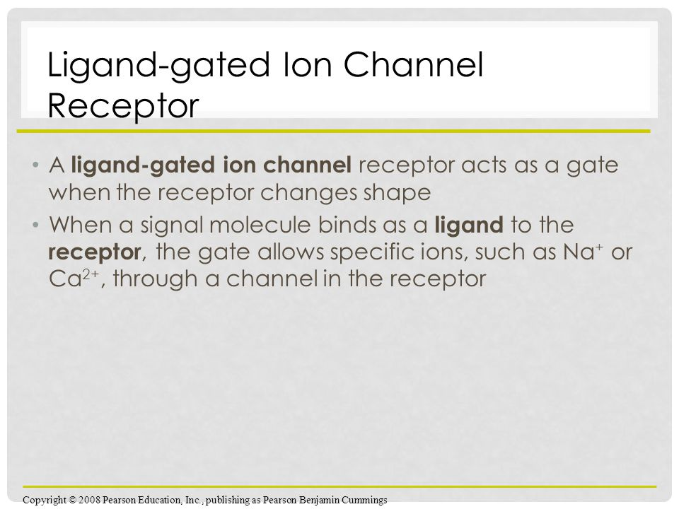 Ligand-gated Ion Channel Receptor