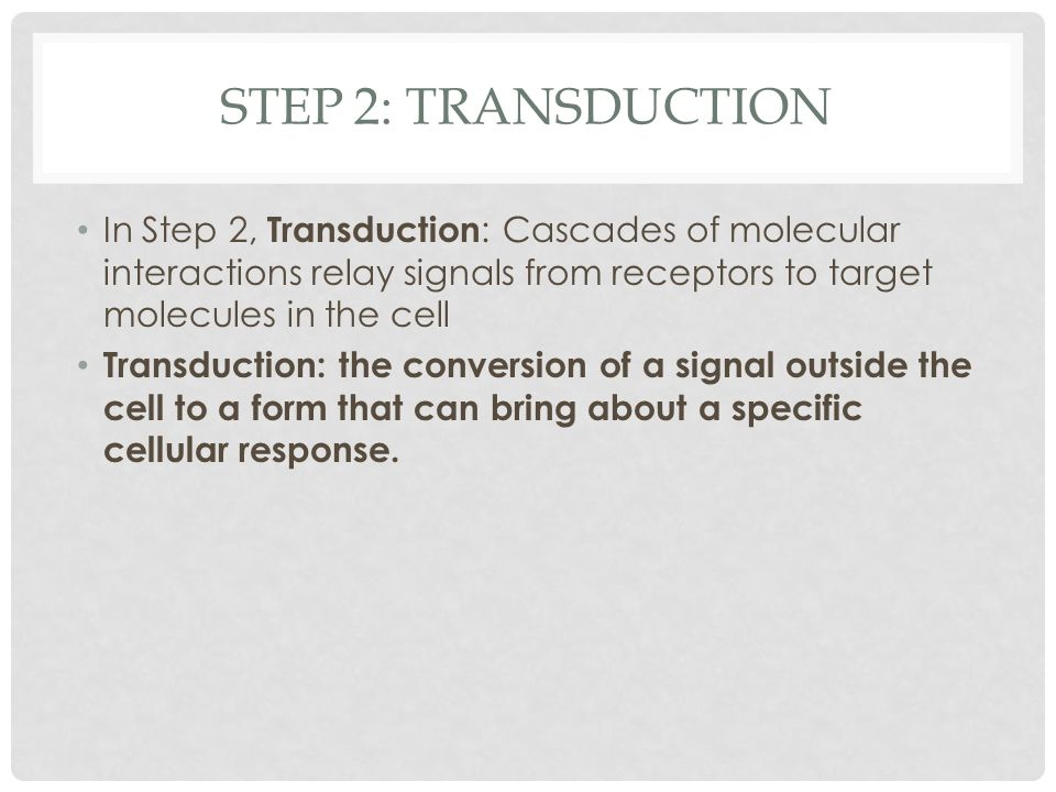 Step 2: Transduction In Step 2, Transduction: Cascades of molecular interactions relay signals from receptors to target molecules in the cell.