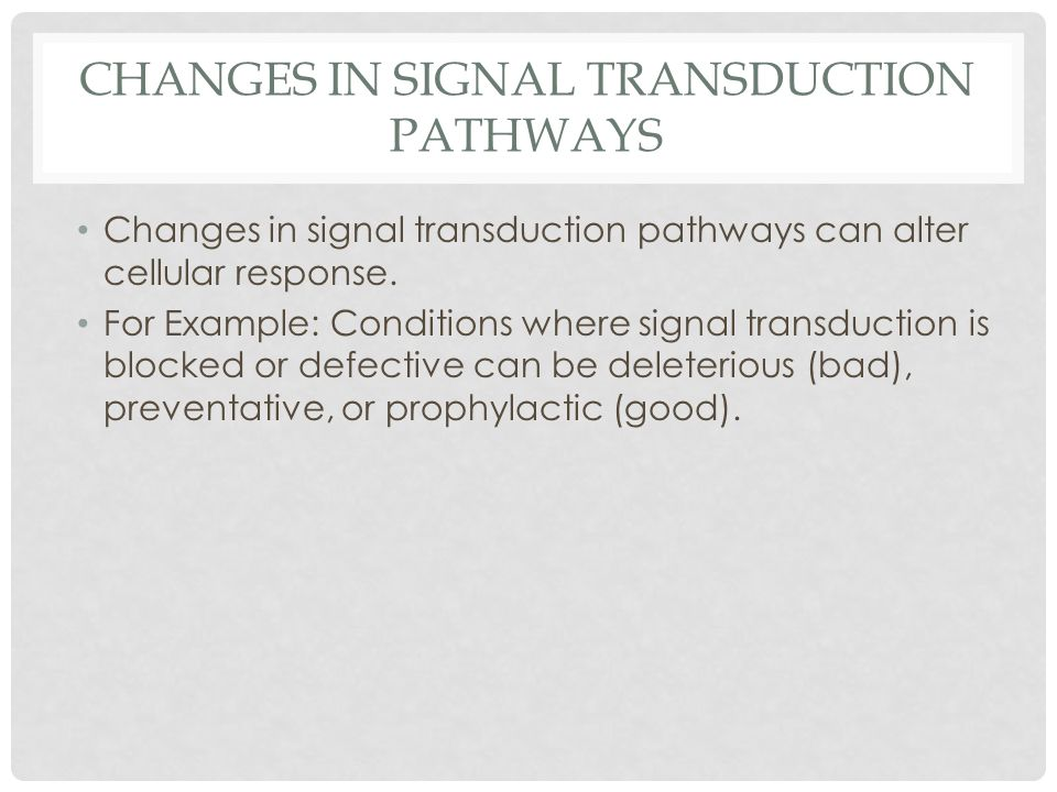 Changes in signal transduction pathways