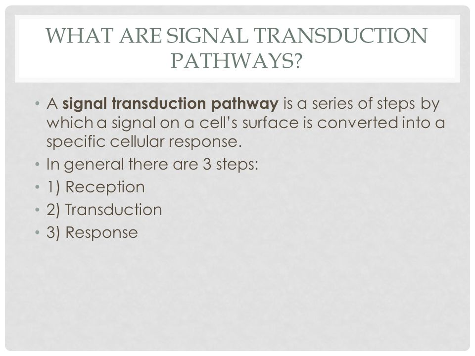 What are Signal transduction pathways