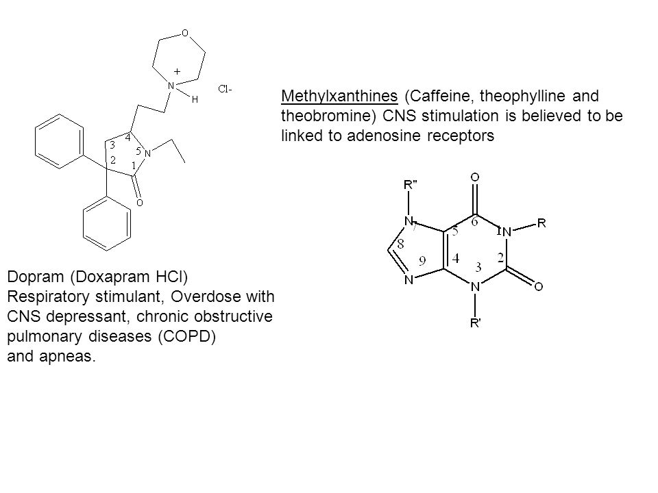 Methylxanthines (Caffeine, theophylline and