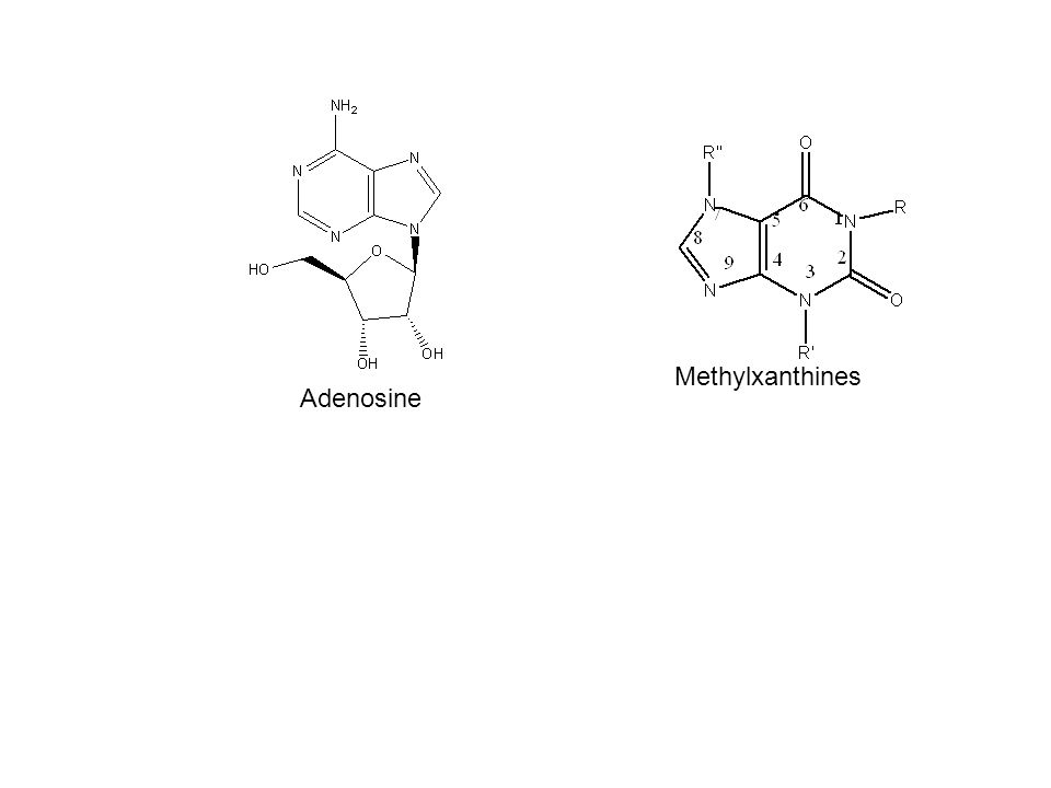theophylline structure activity relationship of metformin