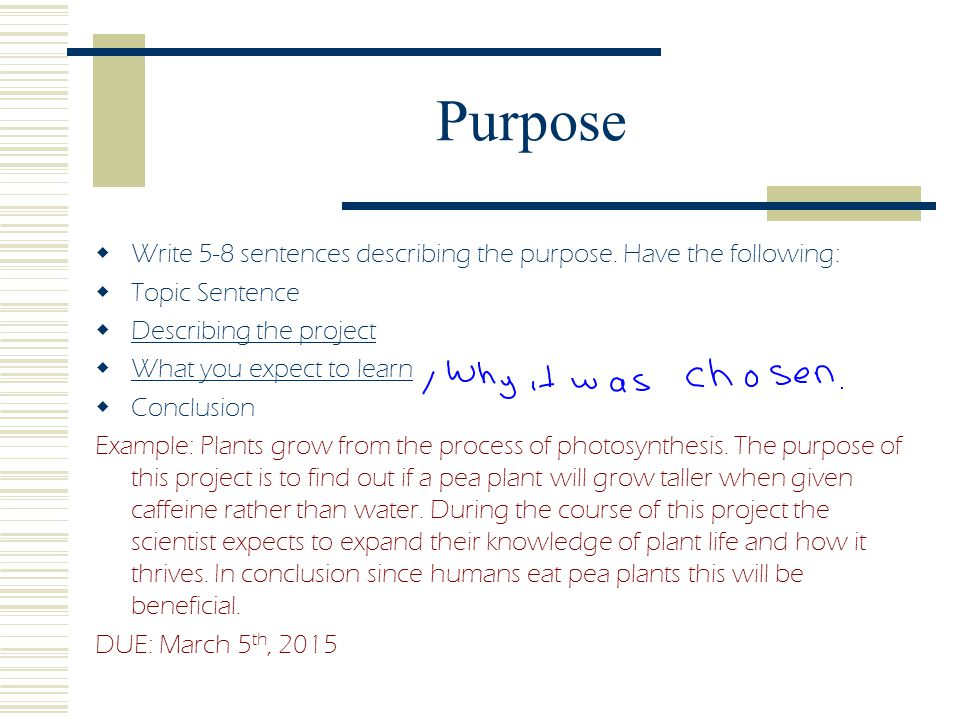 Purpose Write 5-8 sentences describing the purpose. Have the following: Topic Sentence. Describing the project.