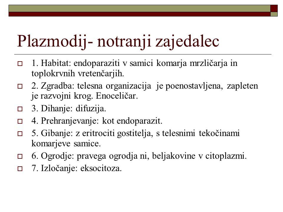Plazmodij- notranji zajedalec