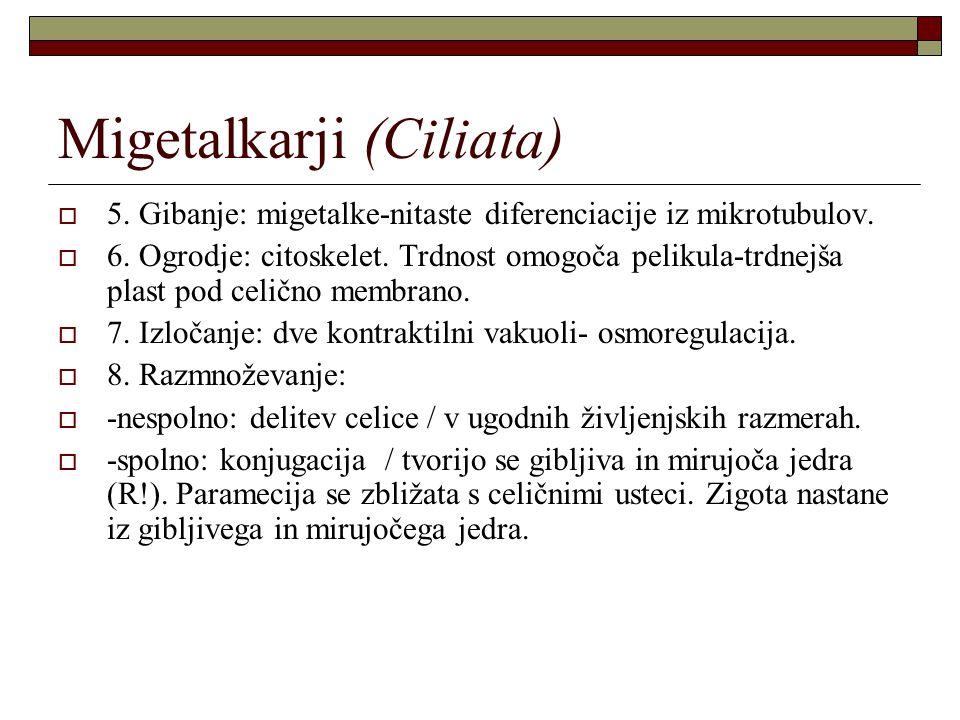 Migetalkarji (Ciliata)