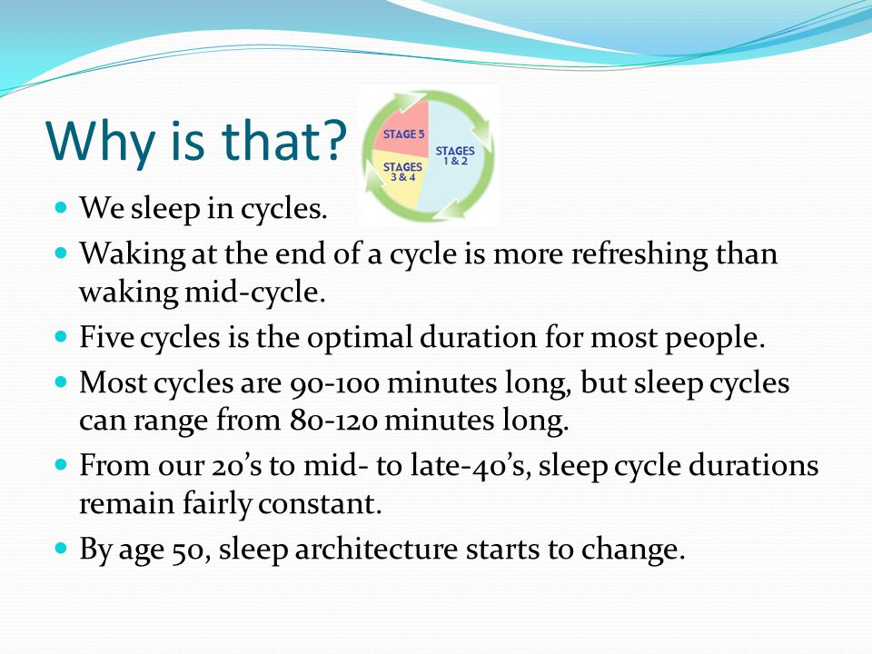 Why is that We sleep in cycles.