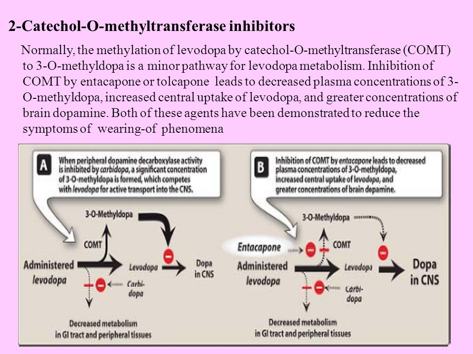 2-Catechol-O-methyltransferase inhibitors Normally, the methylation of levodopa by catechol-O-methyltransferase (COMT) to 3-O-methyldopa is a minor pathway for levodopa metabolism.