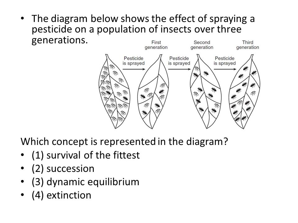 The diagram below shows the effect of spraying a pesticide on a population of insects over three generations.