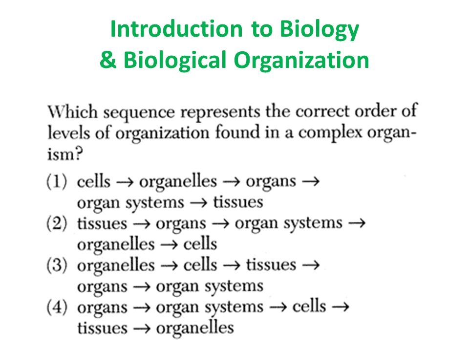 Introduction to Biology & Biological Organization
