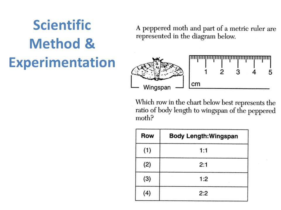 Scientific Method & Experimentation