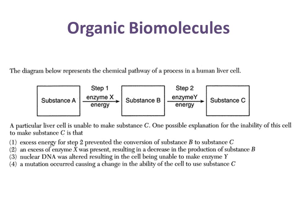 Organic Biomolecules
