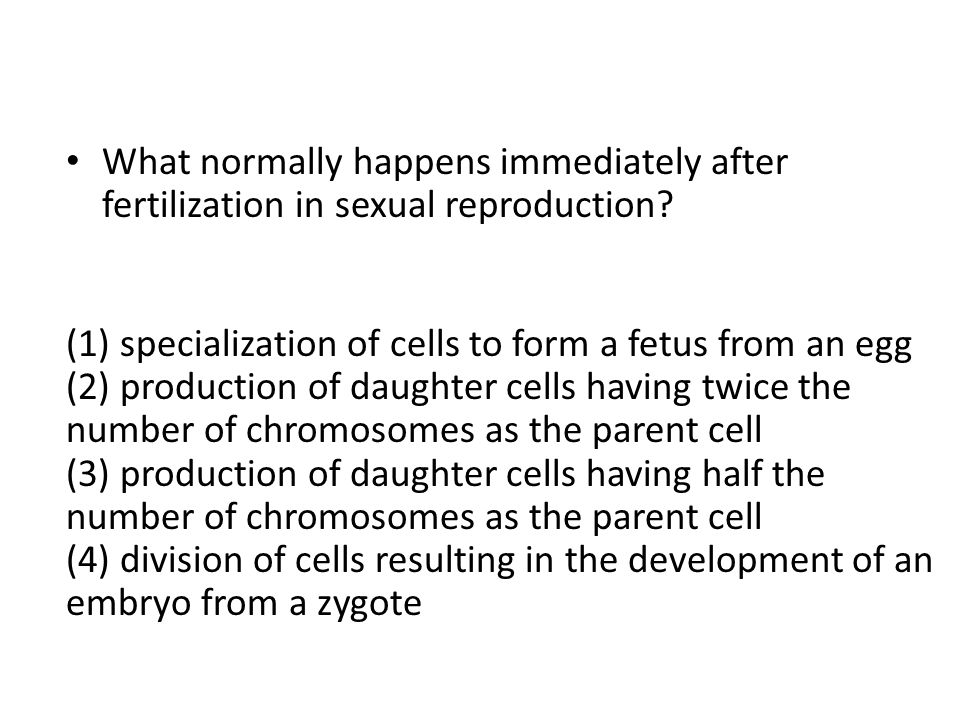 What normally happens immediately after fertilization in sexual reproduction