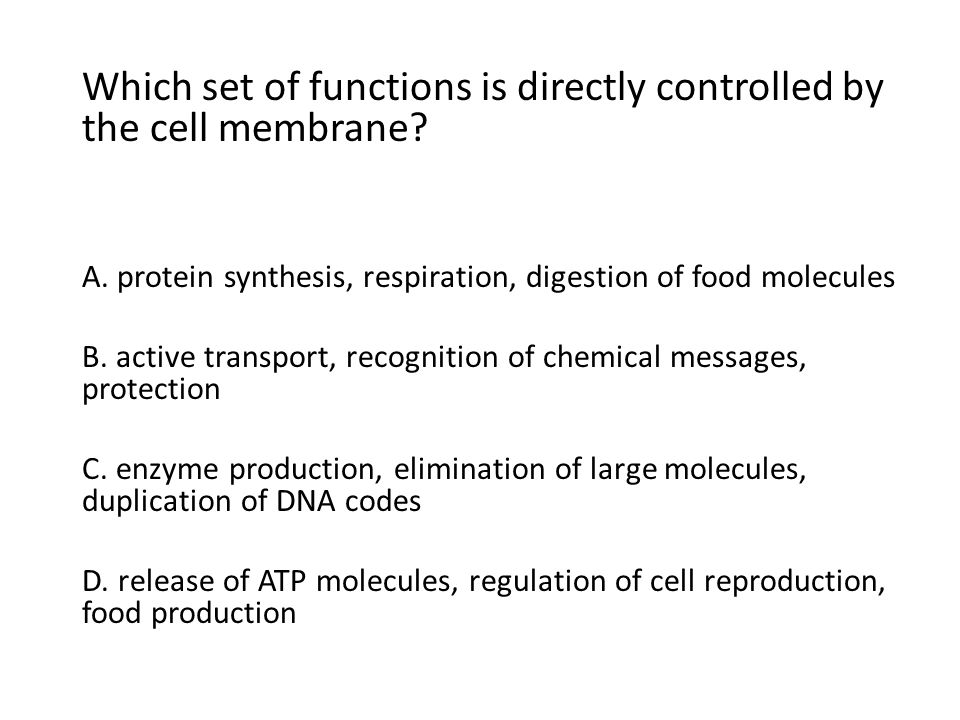 Which set of functions is directly controlled by the cell membrane