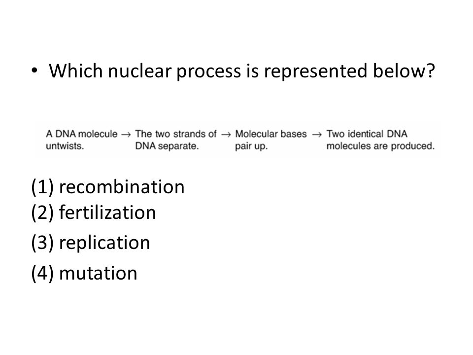 Which nuclear process is represented below