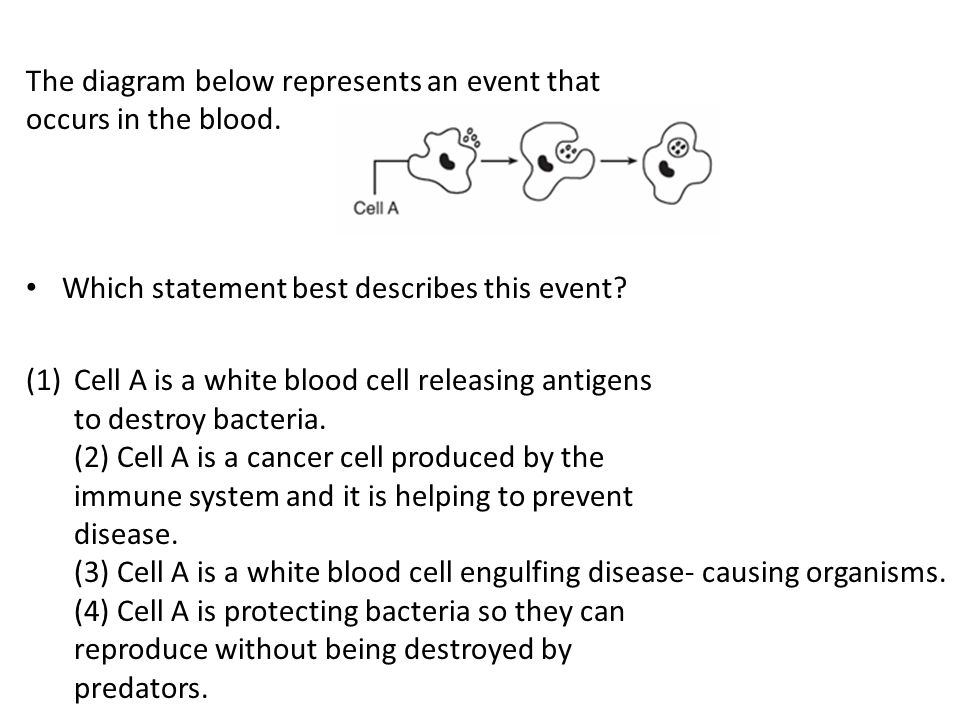 The diagram below represents an event that occurs in the blood.