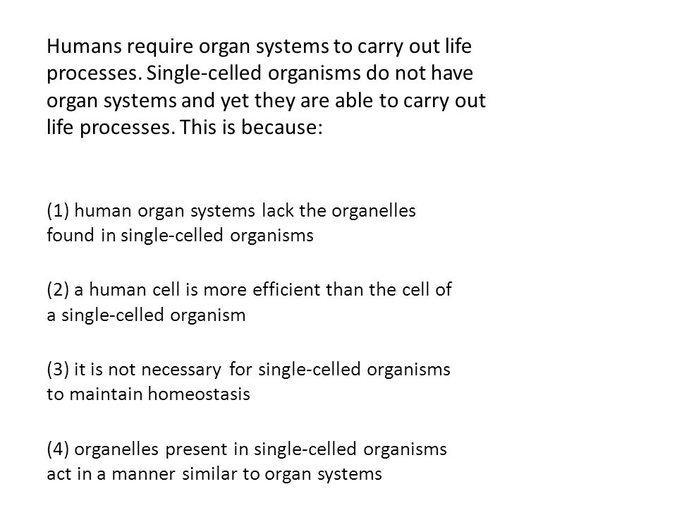 Humans require organ systems to carry out life processes