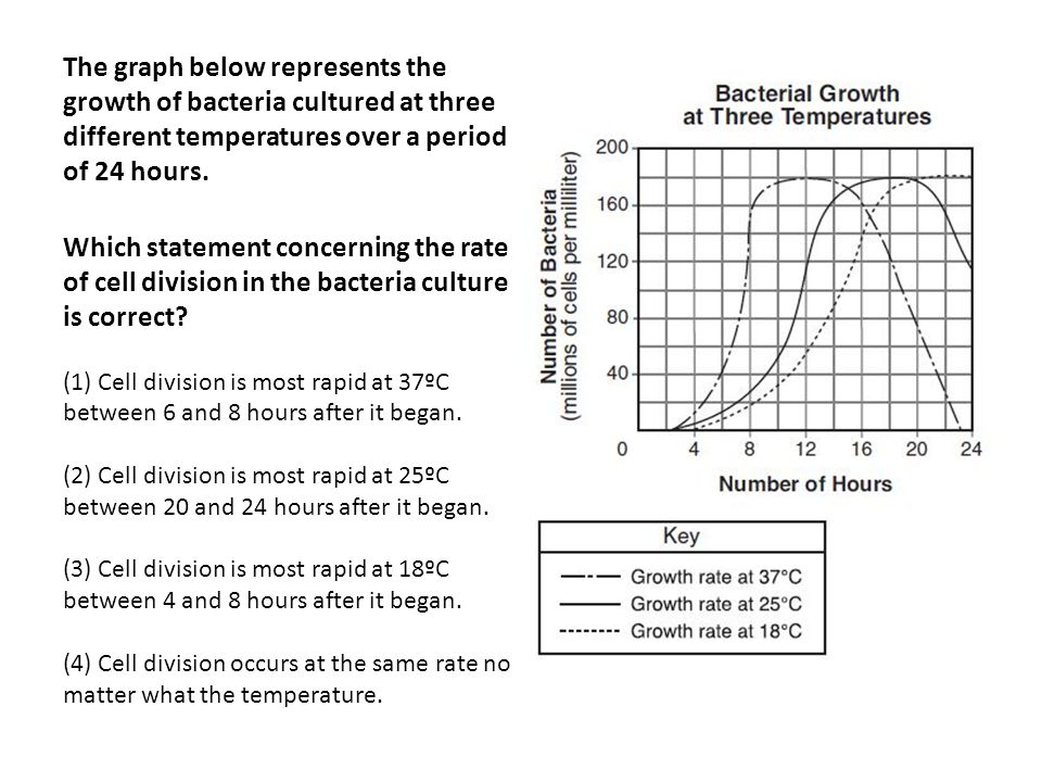 The graph below represents the growth of bacteria cultured at three different temperatures over a period of 24 hours.