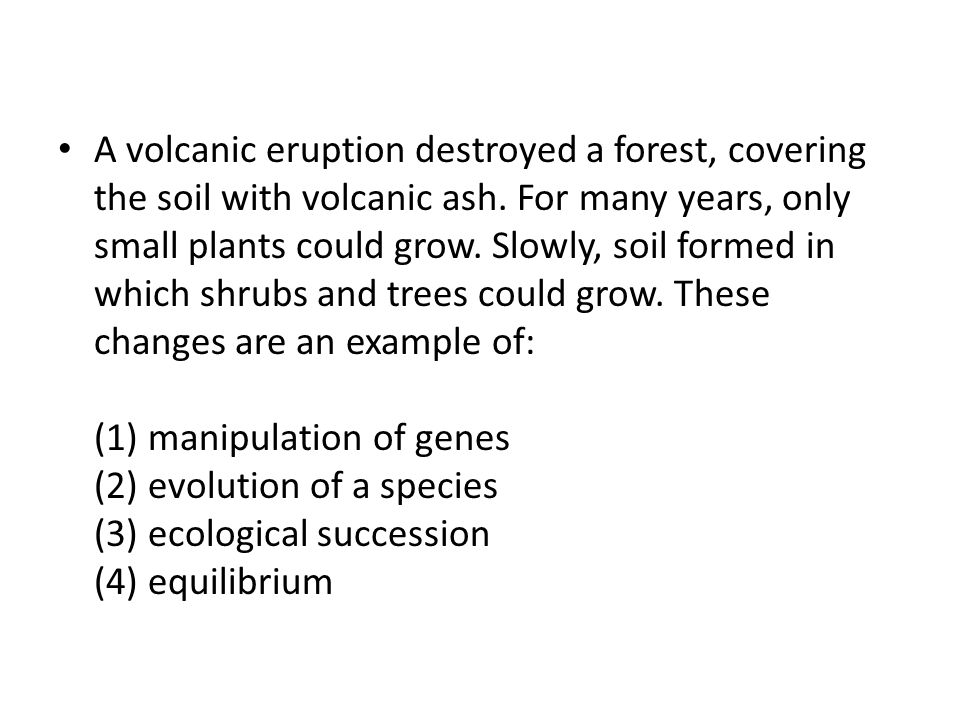 A volcanic eruption destroyed a forest, covering the soil with volcanic ash.