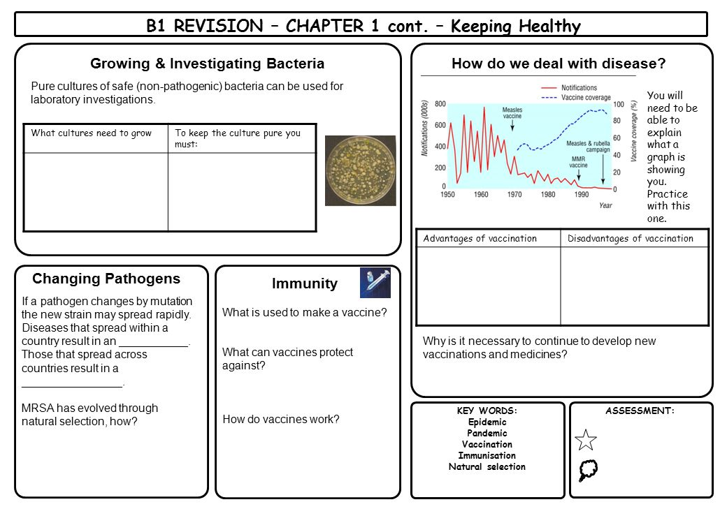 B1 REVISION – CHAPTER 1 cont. – Keeping Healthy