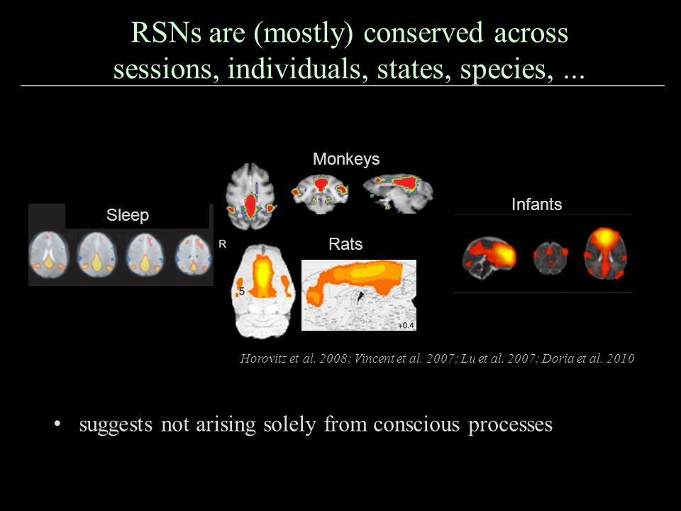 RSNs are (mostly) conserved across sessions, individuals, states, species, ...