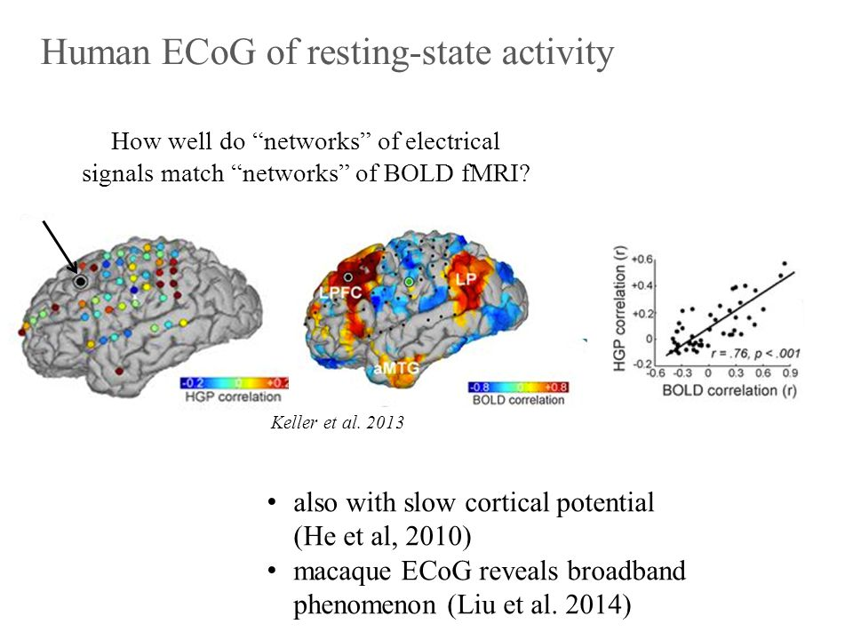 Human ECoG of resting-state activity