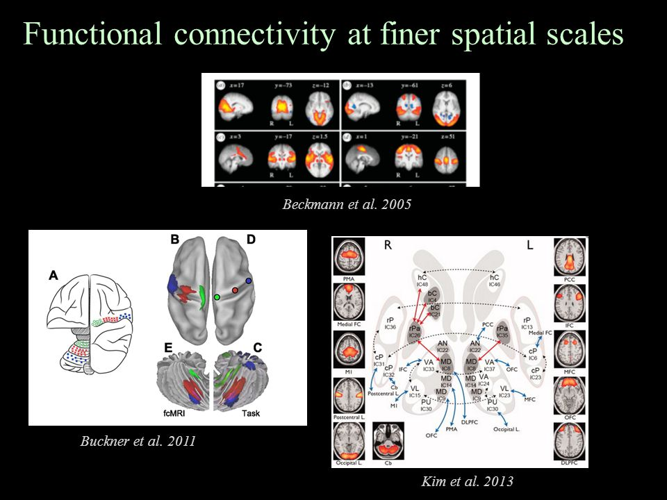 Functional connectivity at finer spatial scales