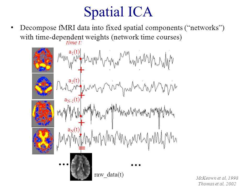 Spatial ICA Decompose fMRI data into fixed spatial components ( networks ) with time-dependent weights (network time courses)