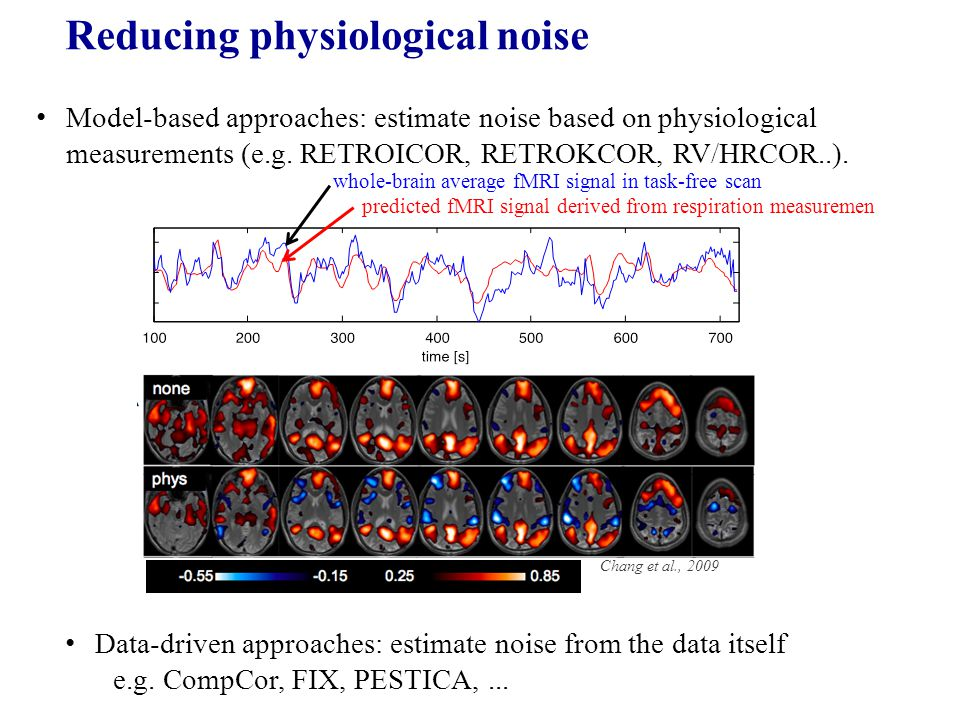 predicted fMRI signal derived from respiration measuremen