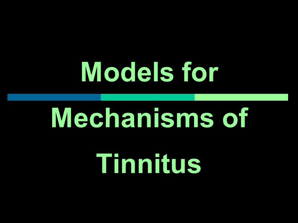 Models for Mechanisms of Tinnitus