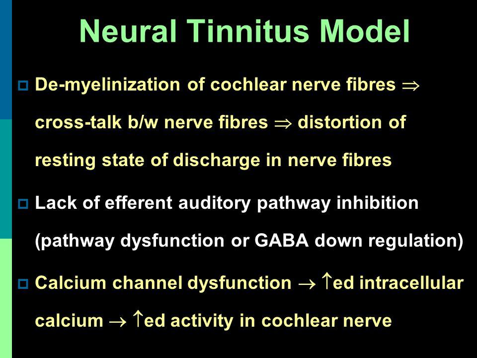 Neural Tinnitus Model