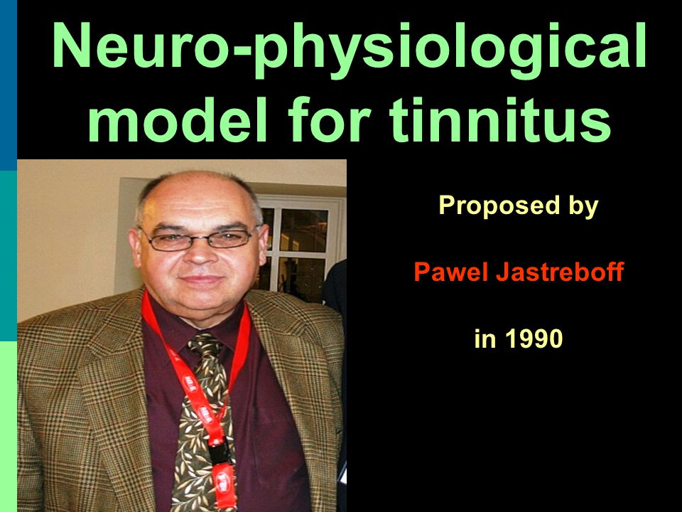 Neuro-physiological model for tinnitus