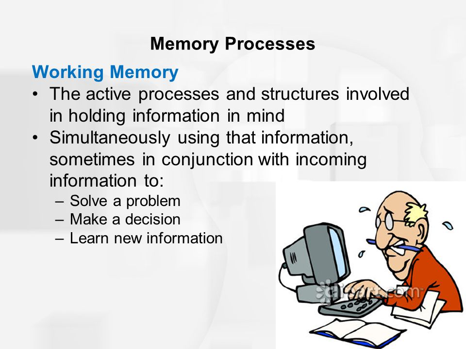 Memory Processes Working Memory