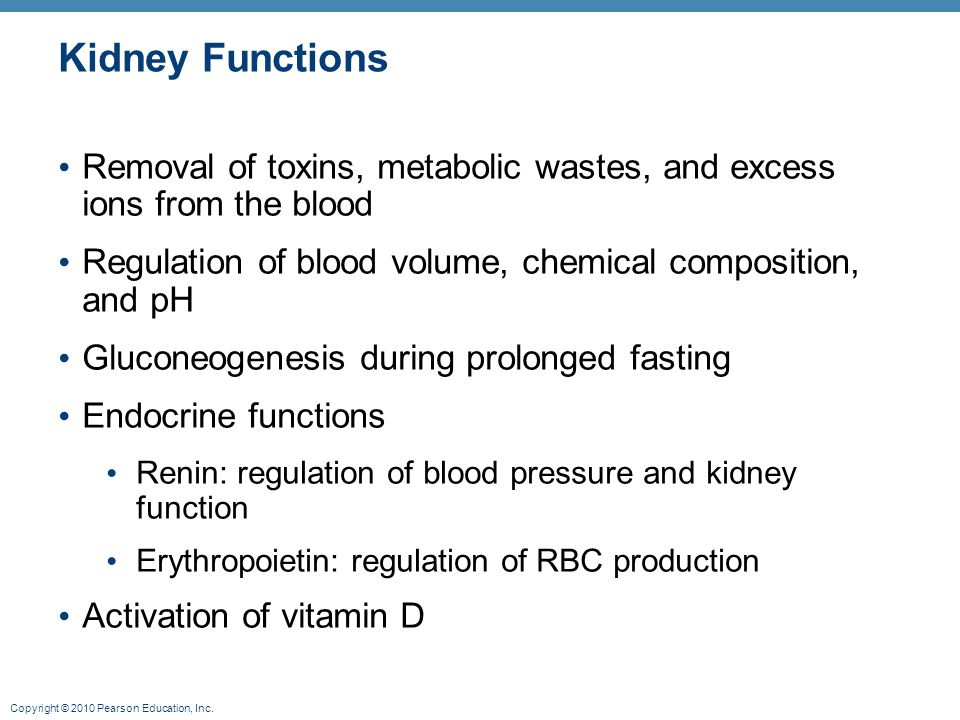 Kidney Functions Removal of toxins, metabolic wastes, and excess ions from the blood. Regulation of blood volume, chemical composition, and pH.