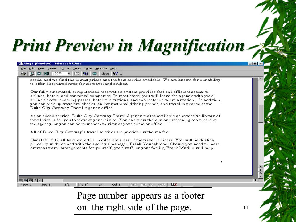 Print Preview in Magnification