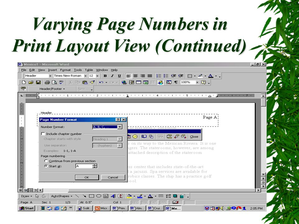 Varying Page Numbers in Print Layout View (Continued)