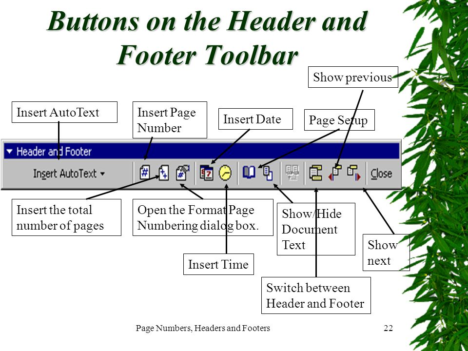 Buttons on the Header and Footer Toolbar