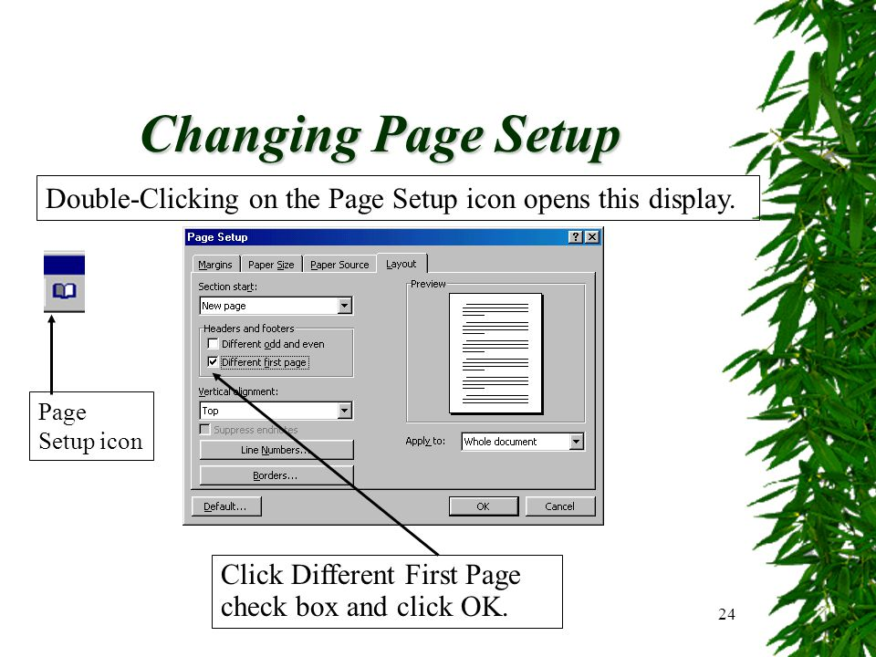 Changing Page Setup Double-Clicking on the Page Setup icon opens this display.