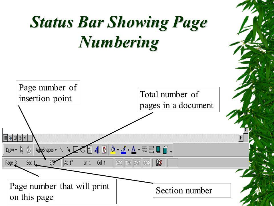 Status Bar Showing Page Numbering