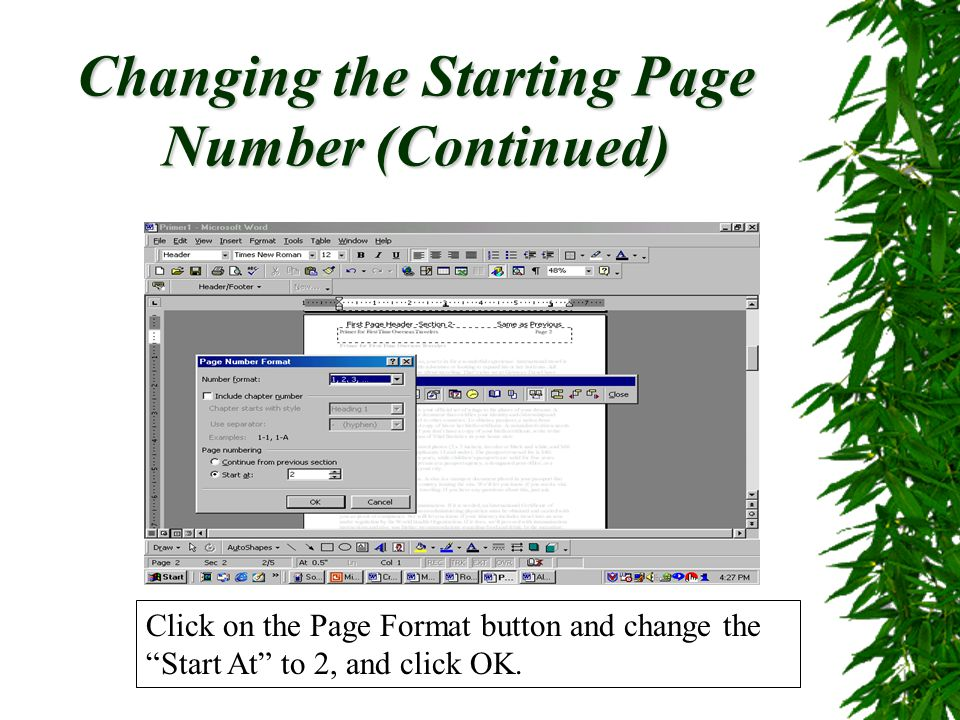 Changing the Starting Page Number (Continued)