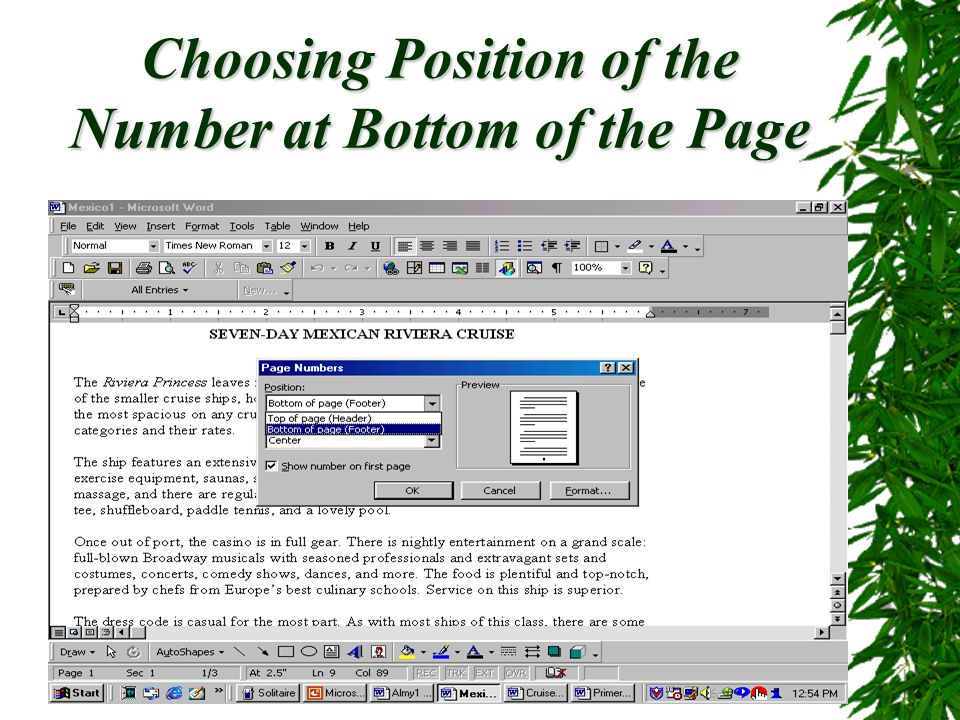 Choosing Position of the Number at Bottom of the Page